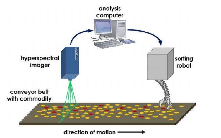 使用机器视觉技术实现谷物检测的应用进展说明