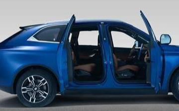 纯电动汽车在市场中受欢迎的原因是什么
