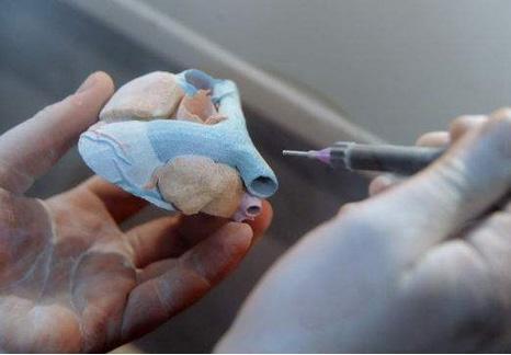 研究人员通过血管3D打印技术制造出了活体皮肤