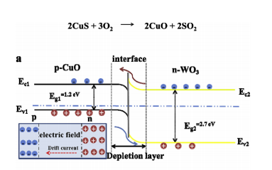 設計花狀WO3CuO復合材料設計高靈敏度高選擇性H2S氣體傳感器的研究