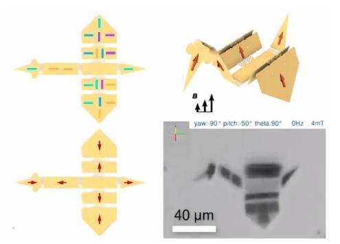 瑞士保罗谢勒研究所近期成功研制出了一种微型机器人