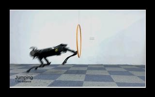 浙大新一代的智能机器狗已经研发成功