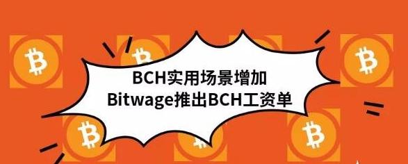 BCH正在被越来越多人的和应用场景认可