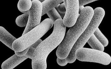 未来结核病的治疗将利用计算机电子技术来解决