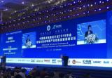 丁文武对中国IC设计产业的五个建议