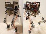 MIT新型两足机器人,可利用人类反射来行走和保持...