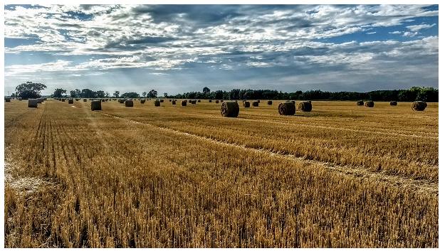 农民不会使用智慧农业还有意义吗