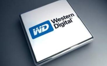 美國硬盤廠商西部數據已決定退出存儲系統業務