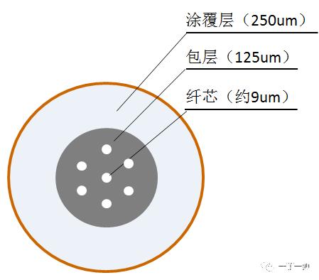 多芯光纤与紧套光纤是什么?