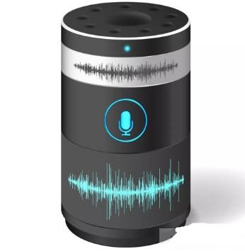 通过利用DSM智能放大器提升扬声器的音量和低音响应