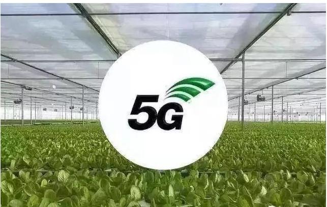 大数据在农业领域有什么作为