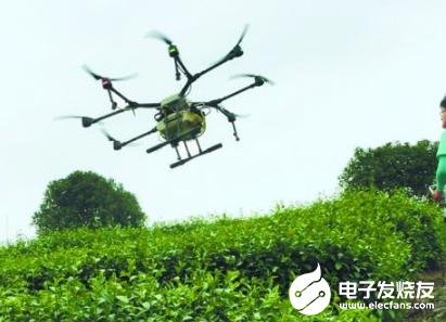 无人机茶树病虫防治智能技术省时省力 预计明年将大面积推广
