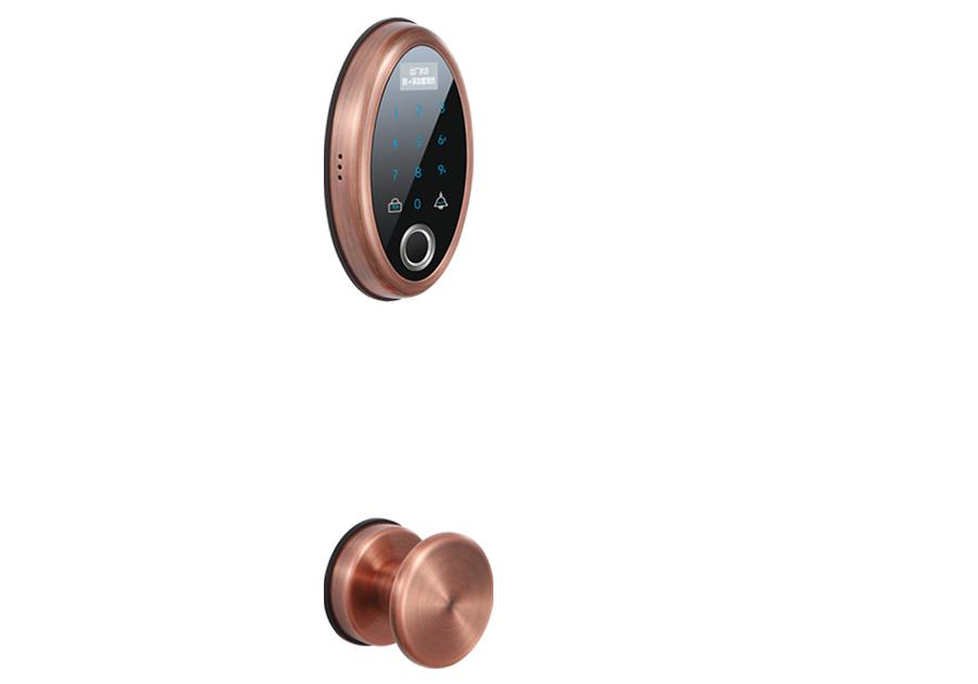 思歌锁业科技C741-AC/BB指纹锁简介