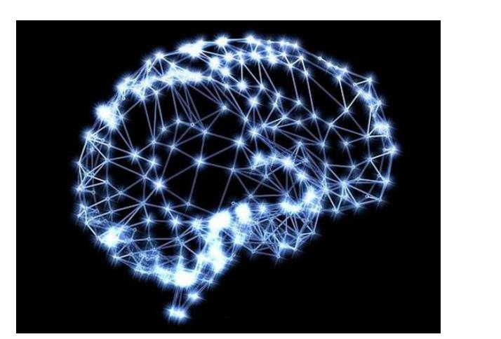 使用神经网络实现语音驱动发音器官运动合成方法详细资料说明