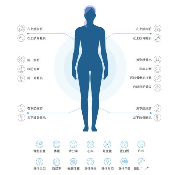 华为智能体脂秤2 Pro正式开售可以识别出各种身体数据