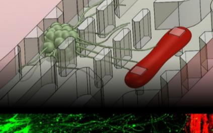 新型医疗电子芯片在医疗领域有了新的应用