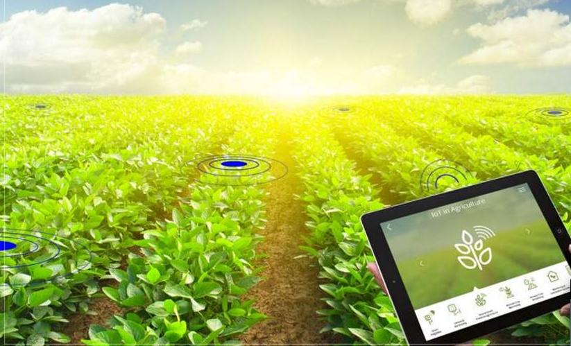 物聯網農場應用生態系統