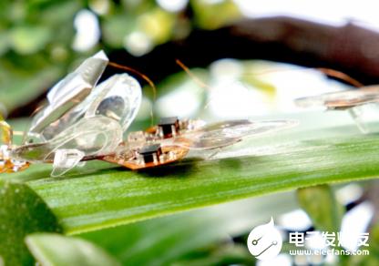 新型軟體微型昆蟲機器人出擊 可以快速移動的同時還具有一定的智能性