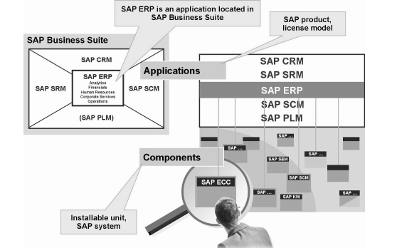 SAP系统架构和客户机概念等详细资料说明