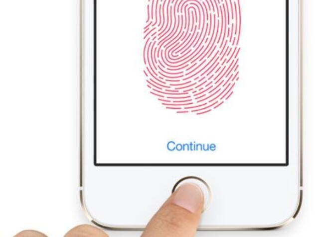 指纹传感器定义_指纹传感器的应用