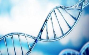 DNA存储技术新突破,万物皆硬盘的时代来临