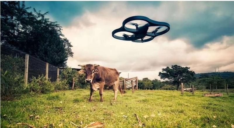 AI农业规模巨大的同时存在什么问题
