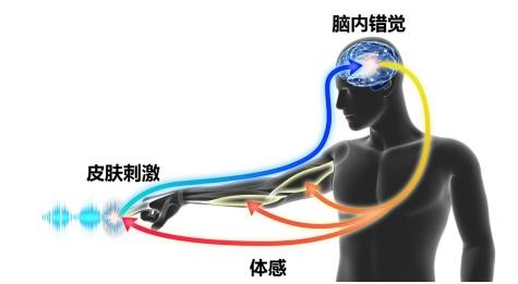 """村田制作�嫠�:关于收购研究""""3D触力觉技�I 术""""的MIRAISENS公司"""