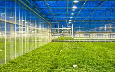NB物聯網技術給農業帶來了什么