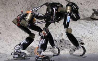 自适应机器人可轻松应对各种非结构化的环境