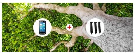 rfid如何来管理古树名木