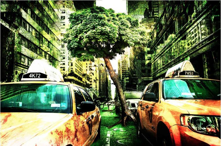 物联网技术可以帮助我们减少气候的影响吗