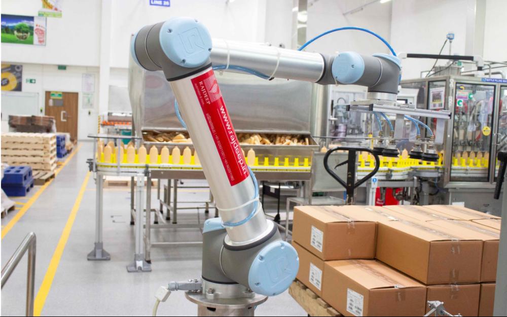 优傲协作机器人小身躯大能量,UR10执行码垛成为欧莱雅印度浦那的上佳之选