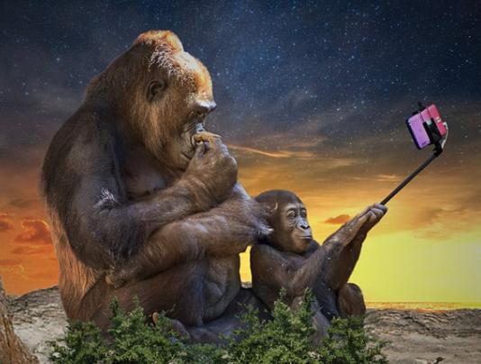 如何才能真正的落實5G服務