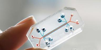物联网新起的塑料处理器,能否当担大任