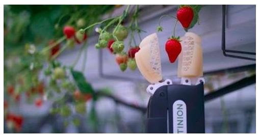 农业机器人崛起会对农民有不好的影响吗