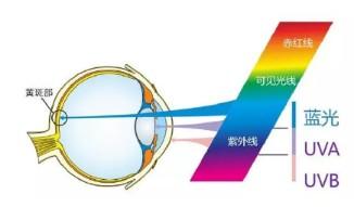 LED是否会成为视力阻碍