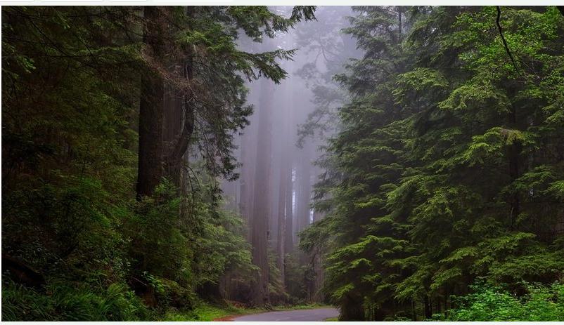 物联网技术如何在雾计算上进行创新