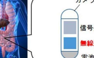 關于人體高速無線通信與無線控制技術的新研究