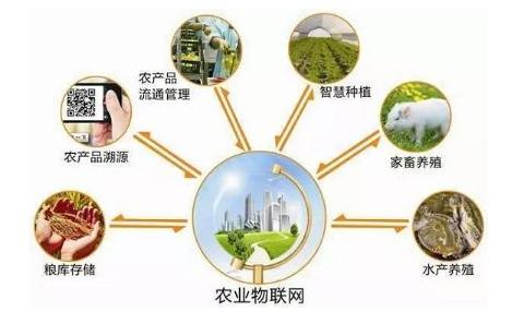农业物联网在农业上有哪些应用?