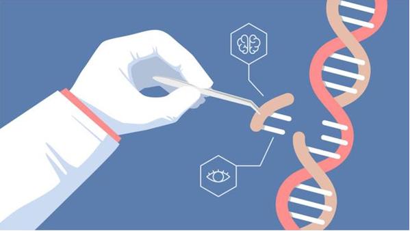 基因编辑和人工智能可以拯救世界?