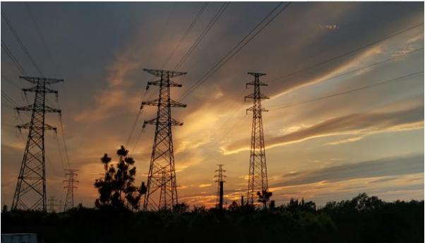 泛在电力物联网概念股集体翻绿