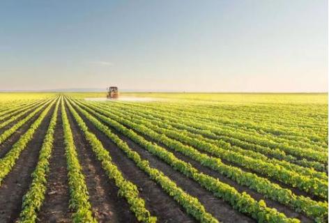 农业农村部办公厅关于印发《2020年乡村产业工作...
