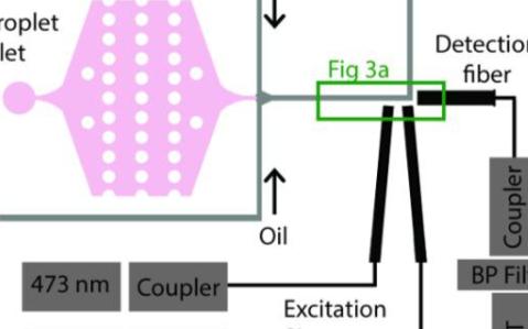 解析光纖嵌入式微流控芯片的制作過程