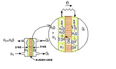 图1为石棉膜型氢氧燃料电池单池(single cell)的结构和工作原理图