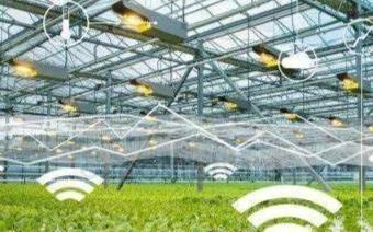 关于物联网技术在农业领域中的几大应用