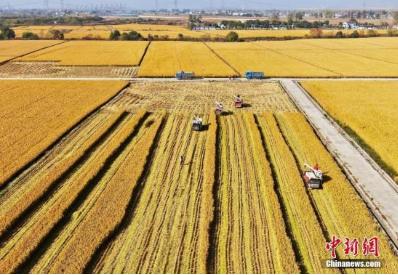促进区块链、人工智能、5G与农业融合
