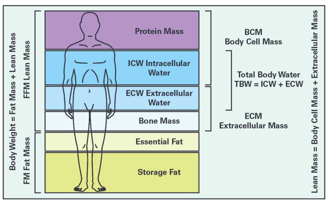 生物电阻抗分析在疾病临床监测和诊断中的应用