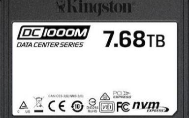 金士顿公布DC1000M U.2固态硬盘16通道设计