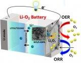韓國科學家制造出電極,或能延長鋰空氣電池的壽命