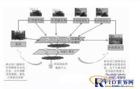 如何借用物聯網技術來管(guan)理樹木